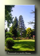 Promenade au jardin Massey