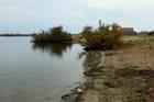 promenade autour de l' étang