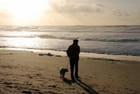 promenade dans le coucher de soleil