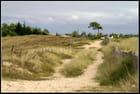 Promenade dans les dunes...