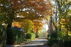 promenade du 11 octobre 2013