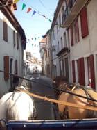 Promenade en calèche à Salies de Béarn