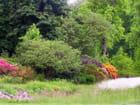 Quand les couleurs agrémentent la nature...