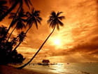 que l beaux coucher soleil