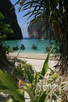 Quelle plage