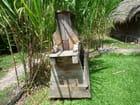 Râpe à manioc