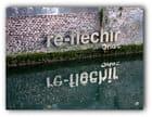 Reflet (chir)...