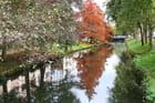 Reflet d'automne pour l'Iton - 15/11/2014