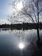 Reflet soleil