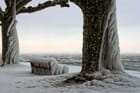 Regard glacé sur le Léman