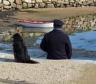 Repos du pêcheur (Juliane)