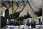 Restaurant troglodyte...