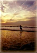 Retour avec les vagues...MM