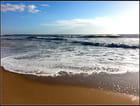Retour de la marée...
