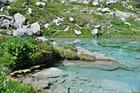 Rives du lac