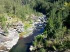 Rivière (5)