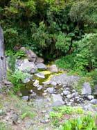 Rivière (9)