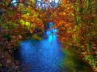 Rivière d'automne.