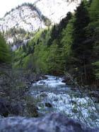 Rivière Haute-Savoie