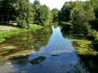 Rivière le Beuvron  Candé sur Beuvron