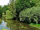 Rivière le Cosson