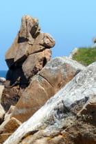 rocher à visage humain
