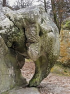 Rocher de l'éléphant
