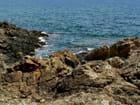 Rochers bord de mer mediterranée