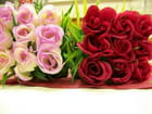 Rouge et Roses