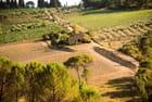 Route du Chianti 3