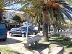 Route entre Parata et Ajaccio (15)