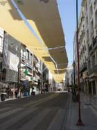 Rue de grenade