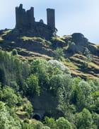 Ruines du château de Tournel