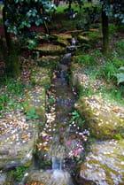 Ruisseau dans la parc de Trévarez