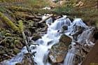 Ruisseau des Moulins