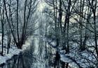 Ruisseau sous la brume