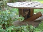 Sa petite maison