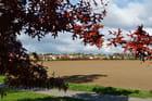 Saint-Witz , près des étangs