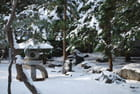 Sanctuaire en hiver