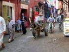 scènes de rue à Marrakech 2