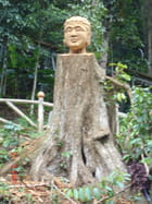 Sculpture sur le tronc d'abre