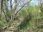 Sentier du Pé de Jojo