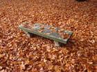 Seul au centre de l'automne