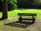 Solitude à Morchène