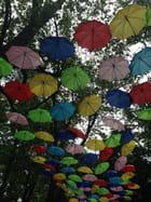 Sous un ciel multicolore