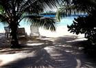souvenirs de Polynesie