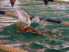 Splash ou l'art de savoir nager.