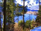 Splendeur d'un Lac gelé des Vosges...