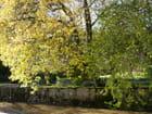 Square du Tennis à l'automne