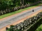 Sur la route d'angkor